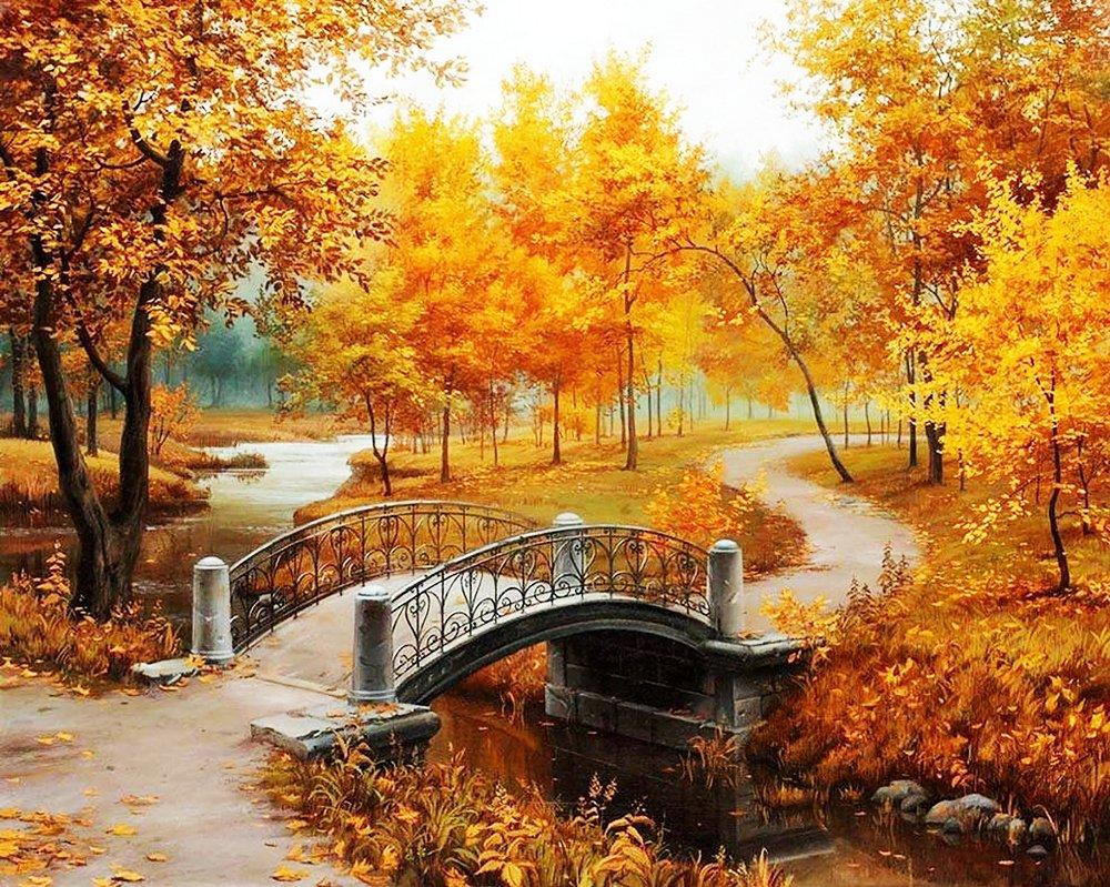 Ноября день, картинки изображения осень