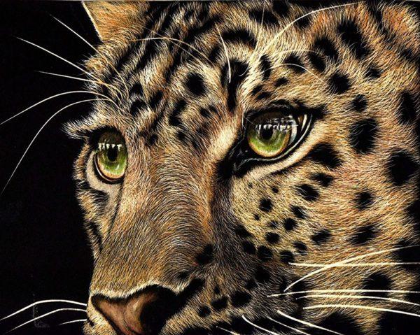 """Набор алмазной вышивки """"Взгляд леопарда"""""""