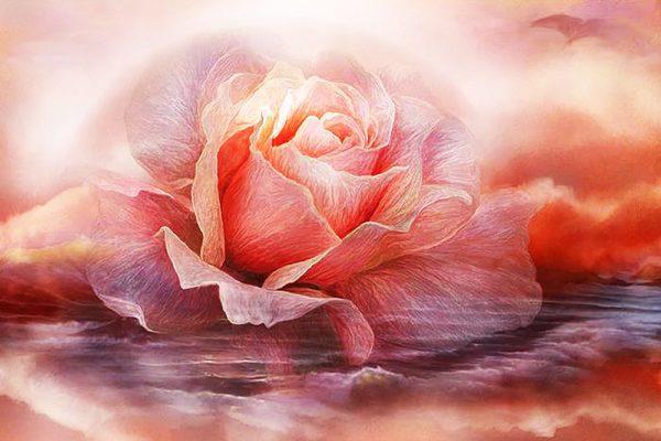 """Набор алмазной вышивки """"Лавандовая роза"""""""