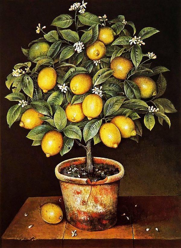 """Набор алмазной вышивки """"Лимонное дерево"""""""