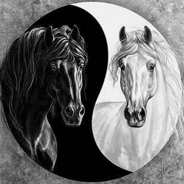 """Набор алмазной вышивки """"Лошади - Инь и Янь"""""""