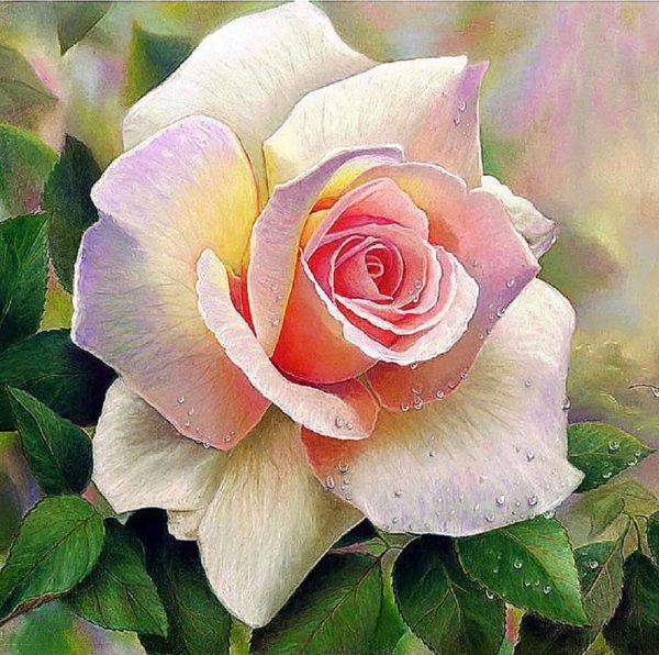 """Набор алмазной вышивки """"Розовая роза"""""""