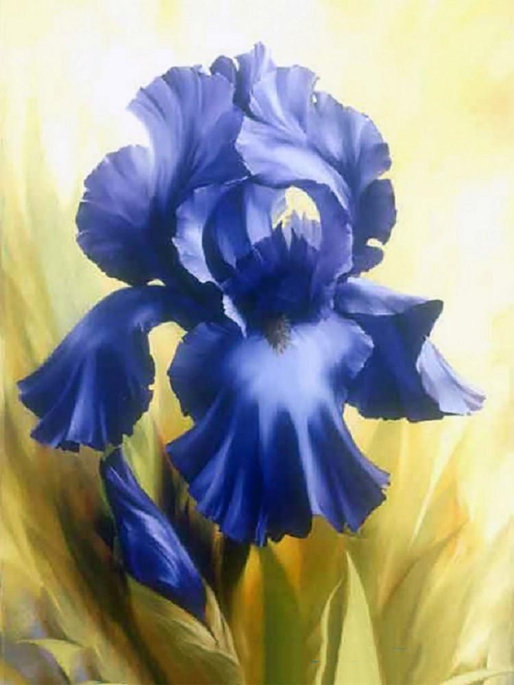 """Набор для рисования картин по номерам """"Синий ирис"""" - Чарівний діамант"""