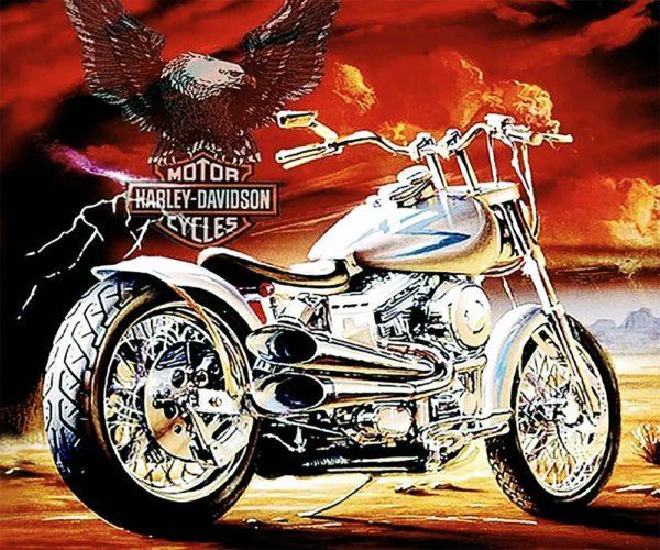"""Набор алмазной вышивки """"Harley-Davidson"""""""